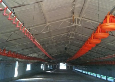 We insulated this poultry shed in regional SA